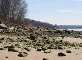 The beach at Garvies Point Preserve