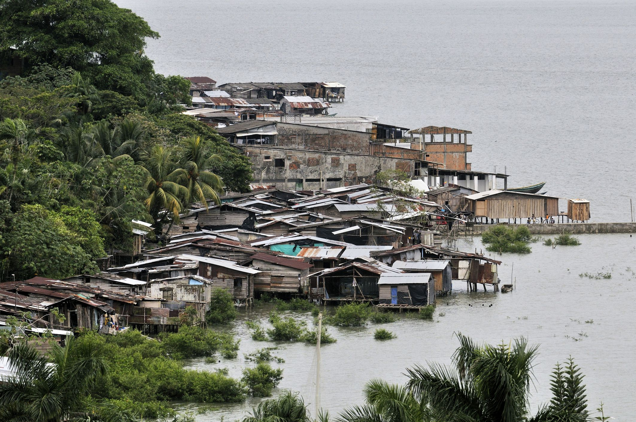 Traditional district, slum with stilt houses on the mangrove banks of the Pacific coast at high tide, Buenaventura, Valle del Cauca, Colombia, South America