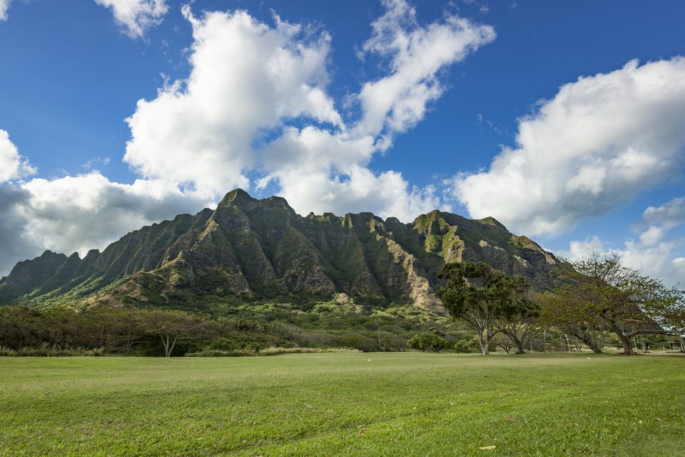 Beautiful cliffs and trees of Kualoa Ranch, Oahu island, Hawaiian Islands.