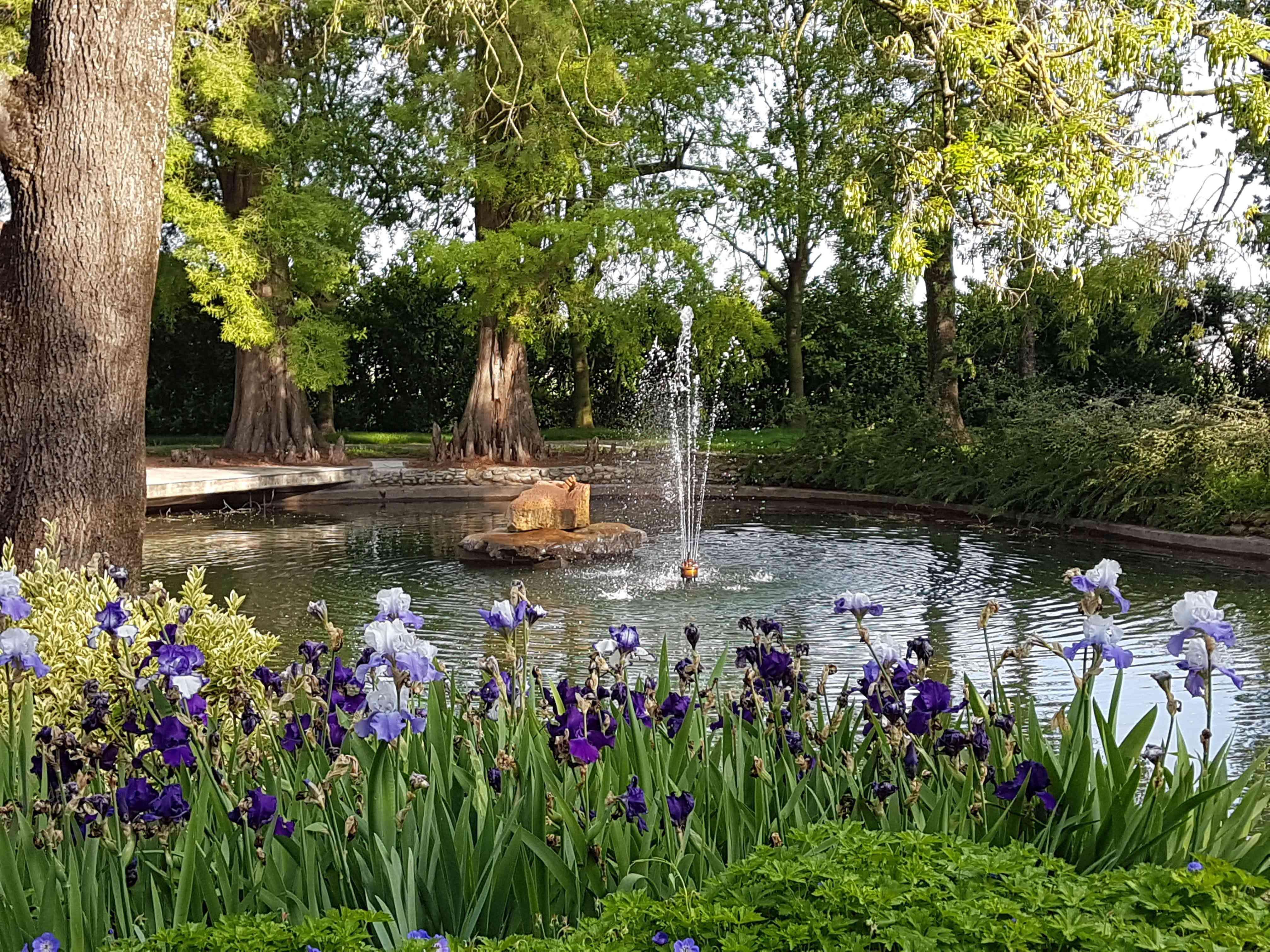 Casa Maria Luigia garden