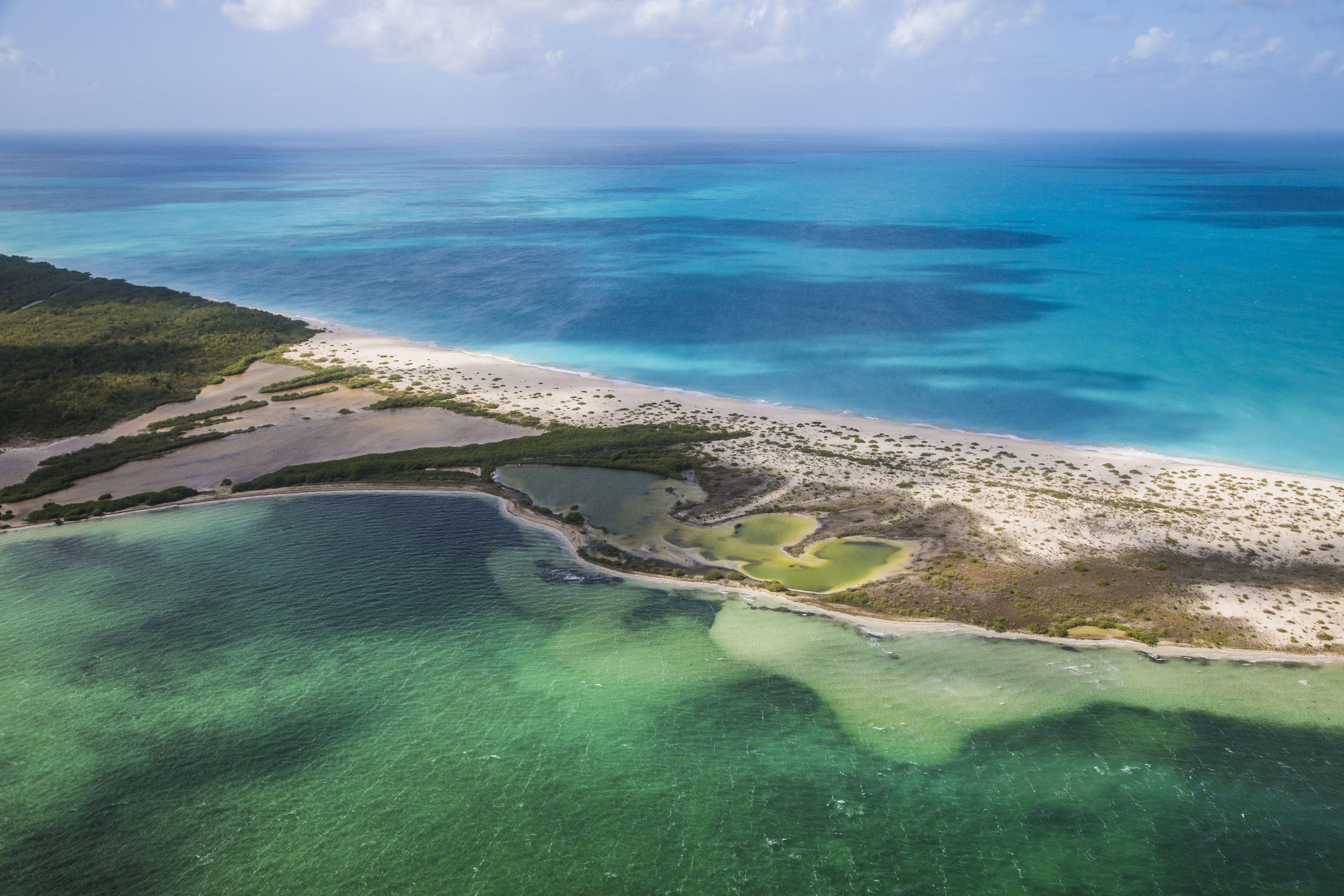 Barbuda S Frigate Bird Sanctuary