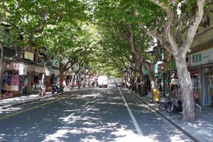 Former French Concession Area in Shanghai