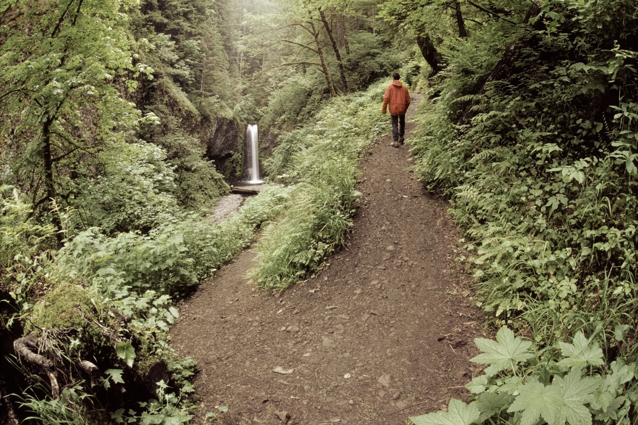Serpintine Trail, Multnomah Creek, Columbia River Gorge, Oregon, USA