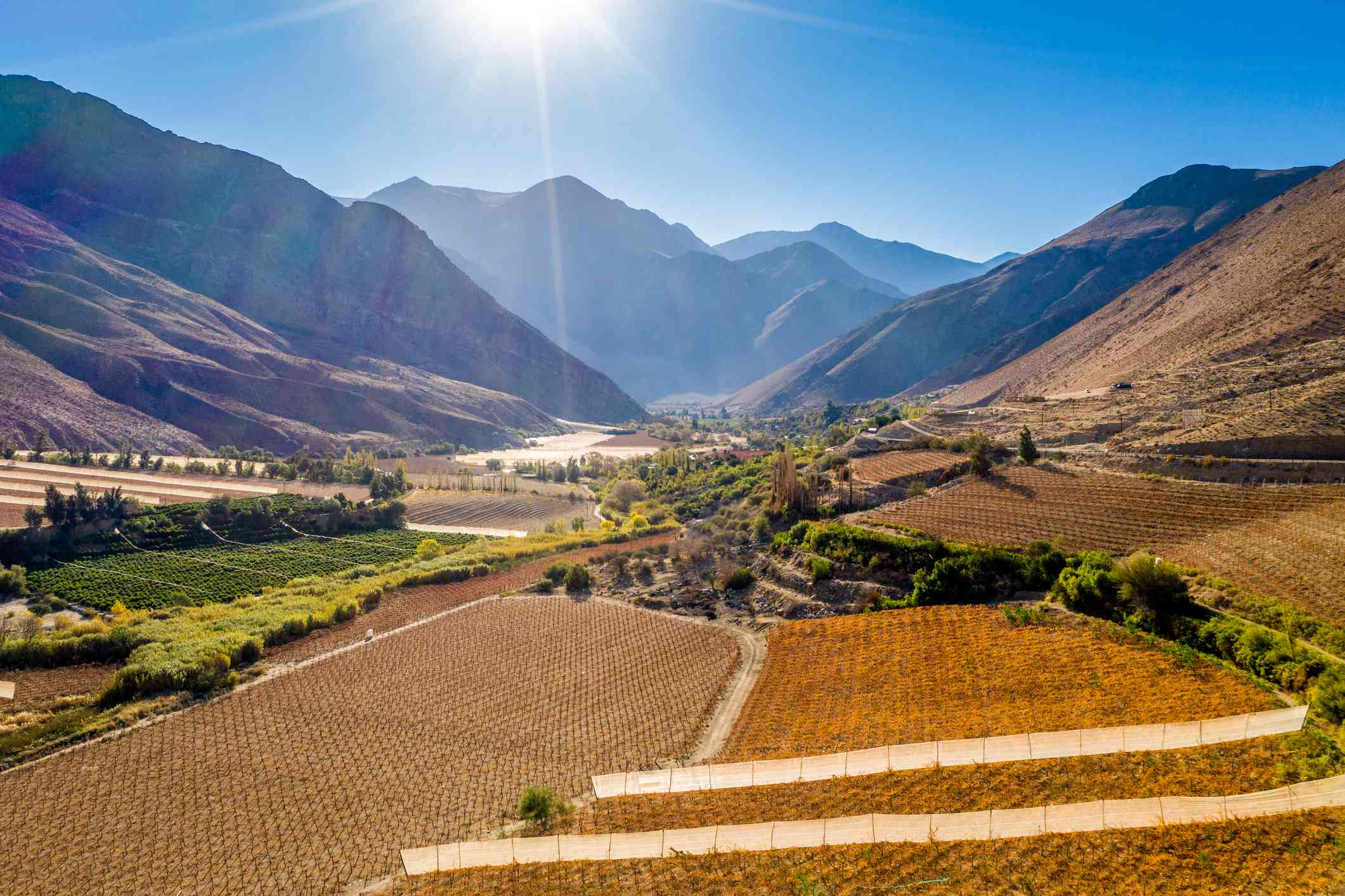 Fields and farmland for the growth of grapes for Pisco production nestled in the mountains of the Elqui Pisco Valley, Coquimbo, Chile.
