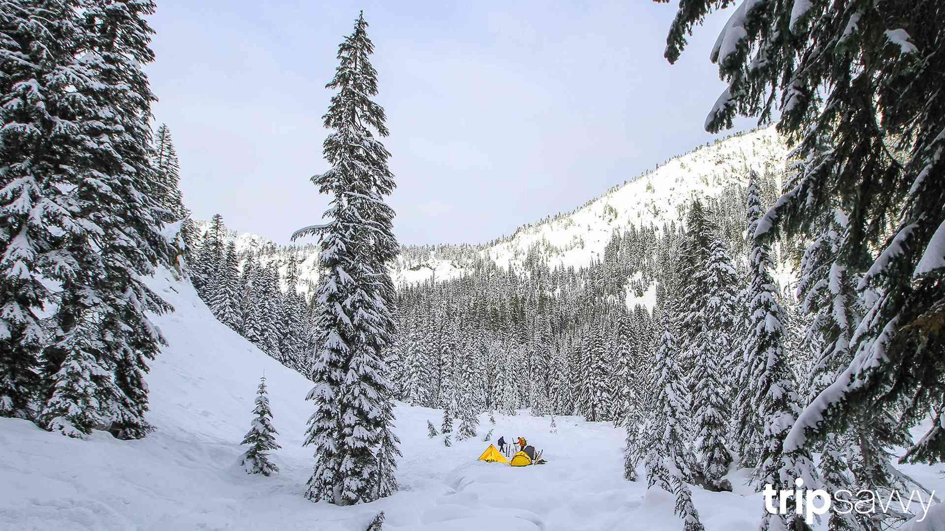 Snowy Cascade Mountains