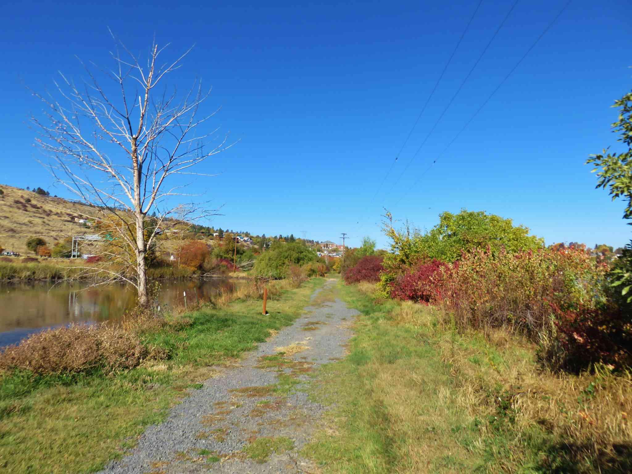 Wingwatchers Nature Trail