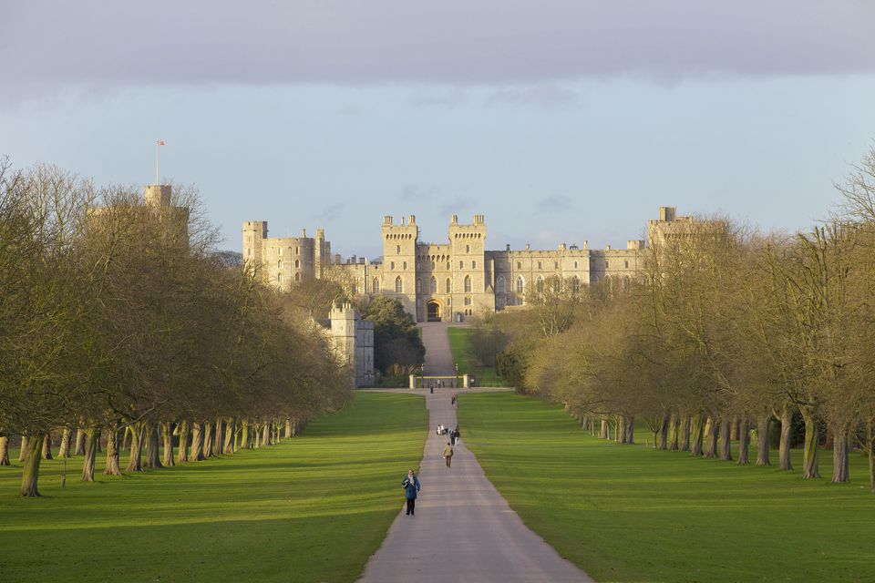Windsor Castle viewed from the Long Walk, Windsor