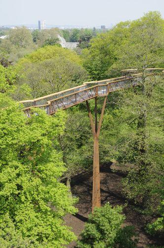 Xstrata Treetop Walkway at Kew Gardens, London.