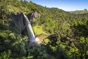 Bridal Veil Waterfalls in Waikato New Zealand surrounded by forest