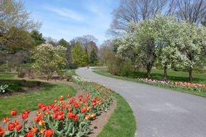 Clark Botanic Garden, Albertson, NY