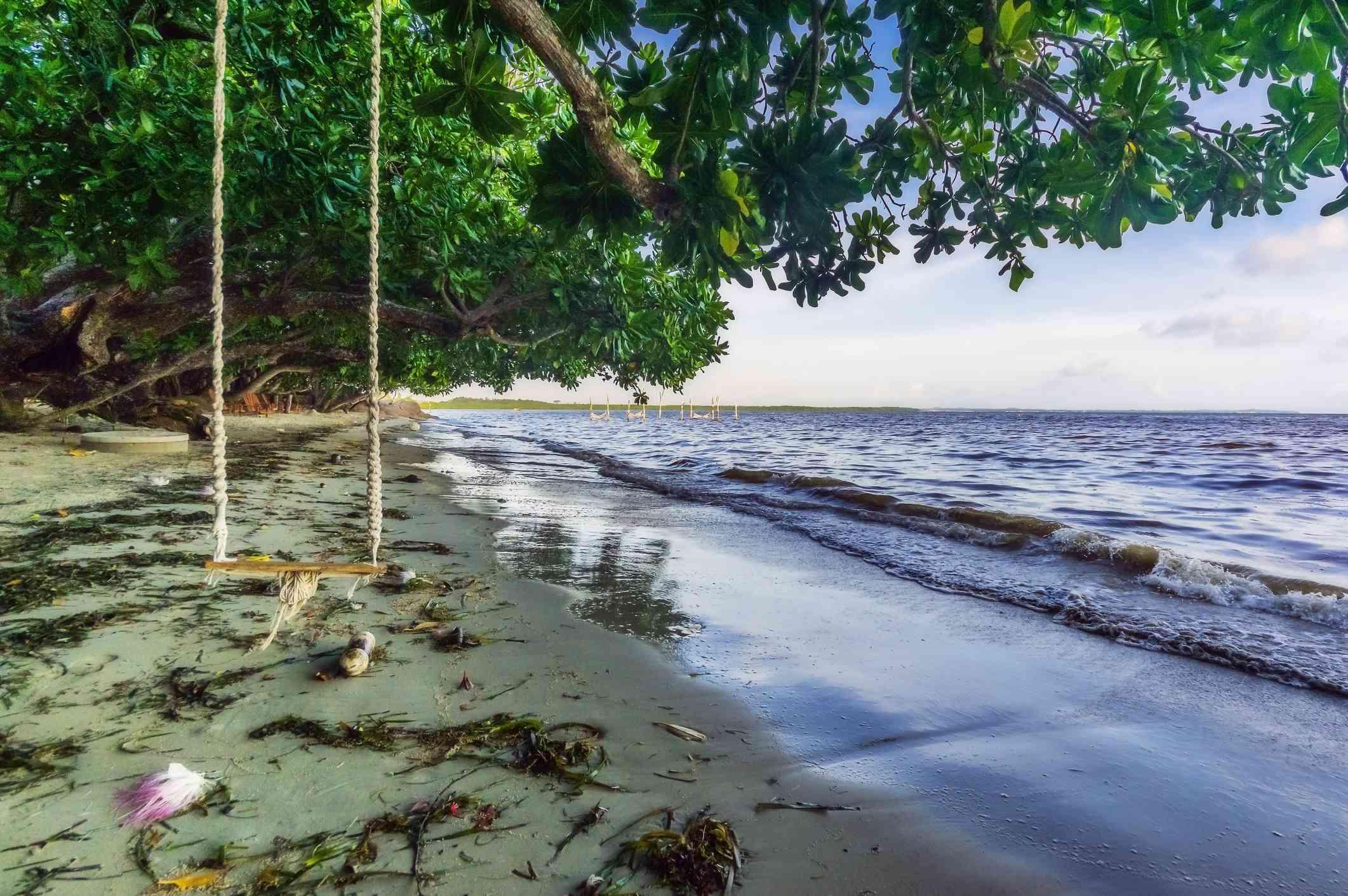 Bintan Island, Empty rope swing on tropical beach