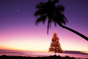 Hawaii, Maui, Olowalu, Christmas tree, with glowing lights ocean, moon in distance