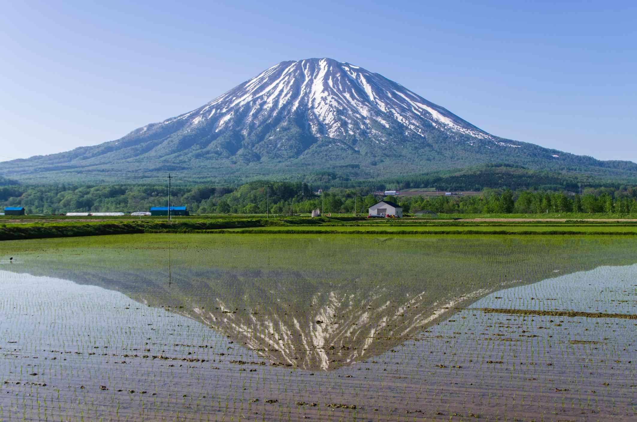 Mount Yotei Hike