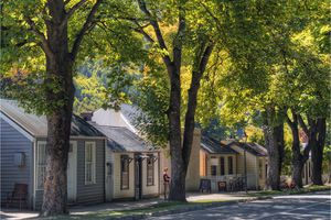 row of small houses on a tree lined street
