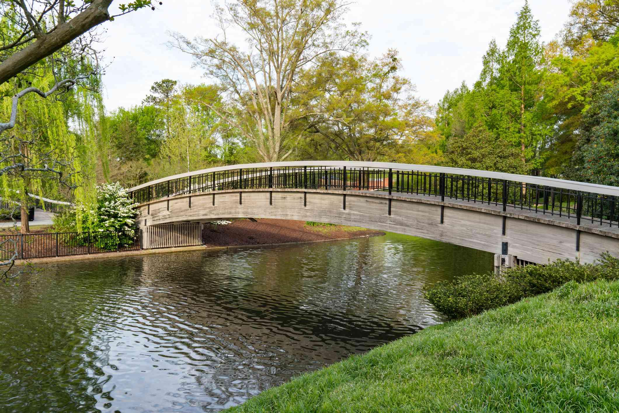 Bridge Over Lake in Pullen Park