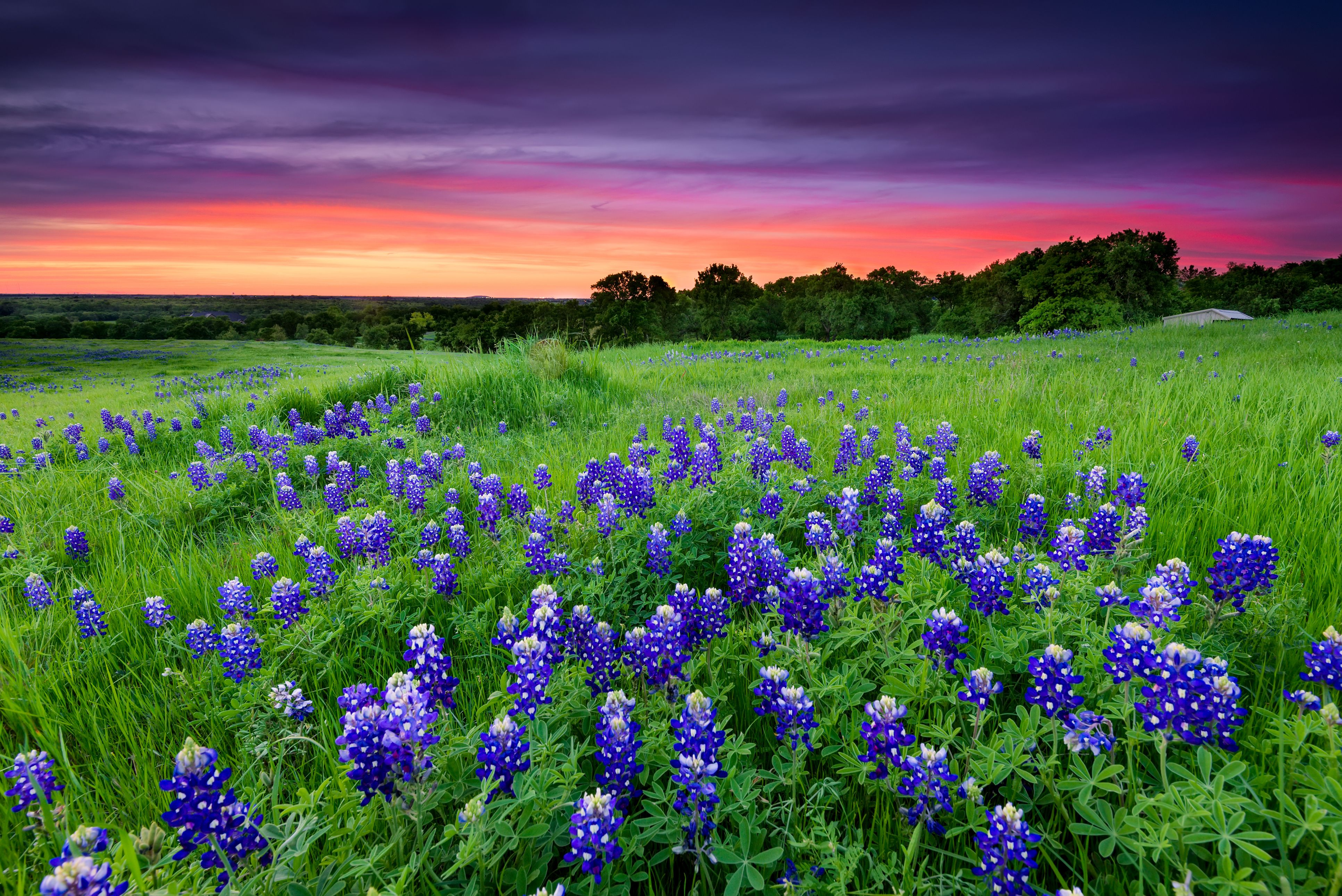 5b9dc01c6ba The Top 10 Things to Do in the Texas Hill Country