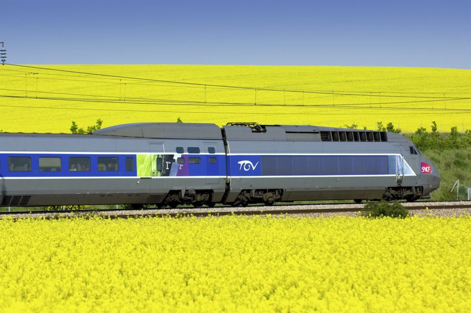 A high-speed TGV train traversing canola fields in France