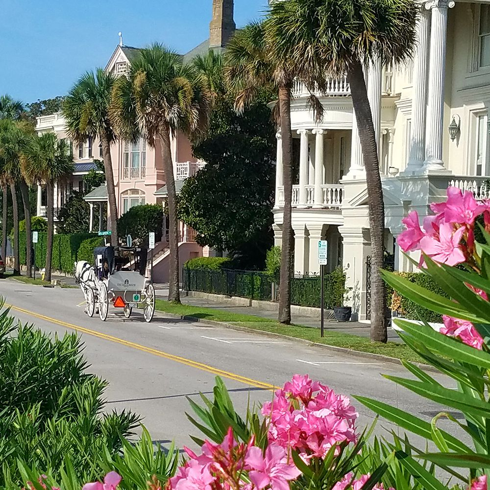 Top 10 Attractions in Charleston, South Carolina