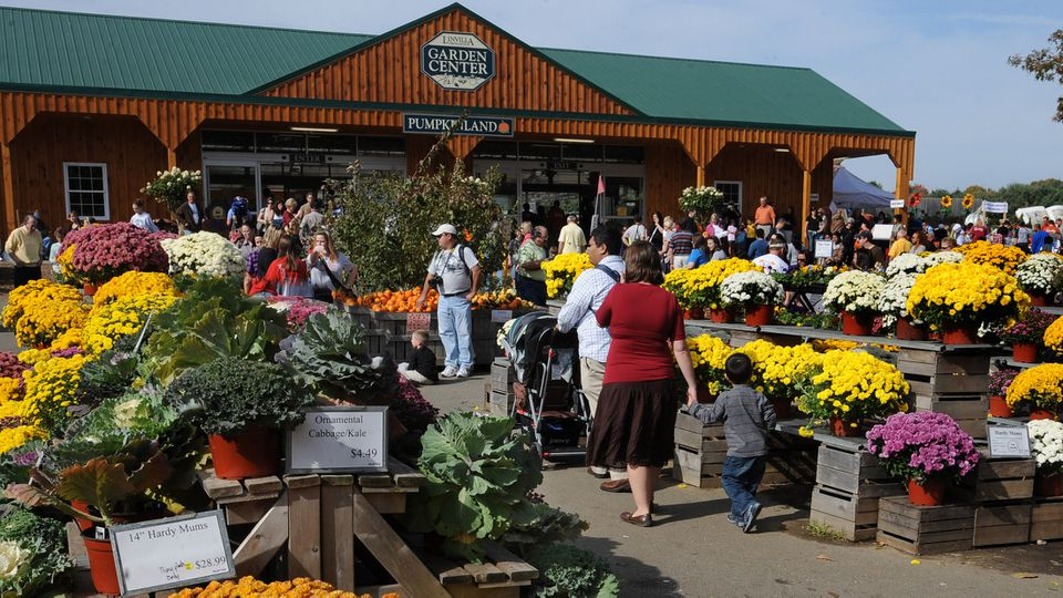 Market with produce and flowers at Linvilla orchards