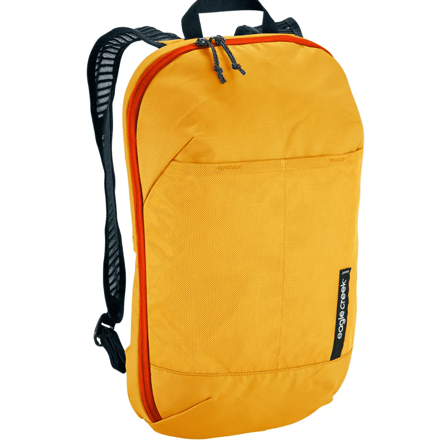 Eagle Creek Pack-It Reveal Org Convertible Pack