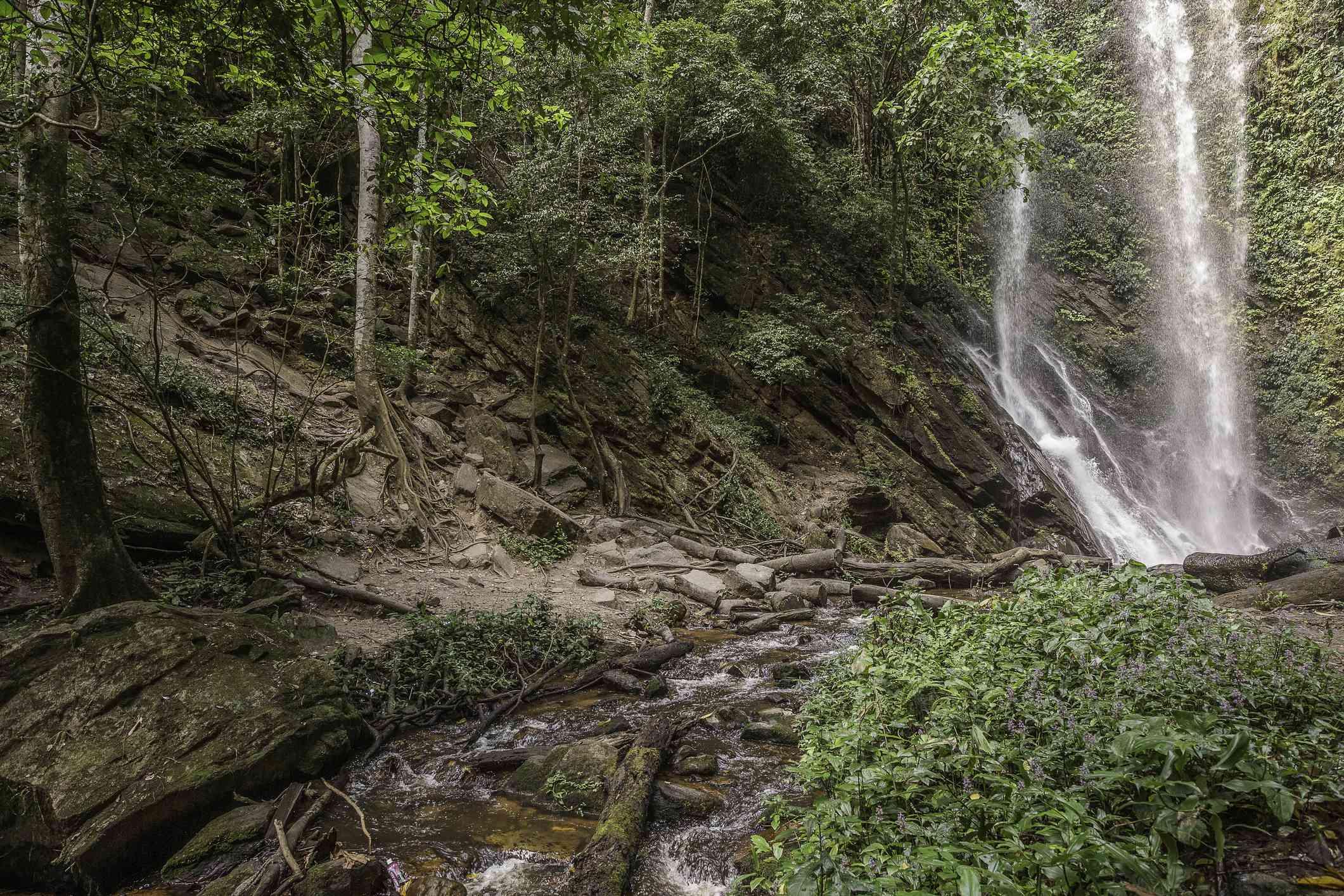 Erin-Ijesha Waterfall, Nigeria
