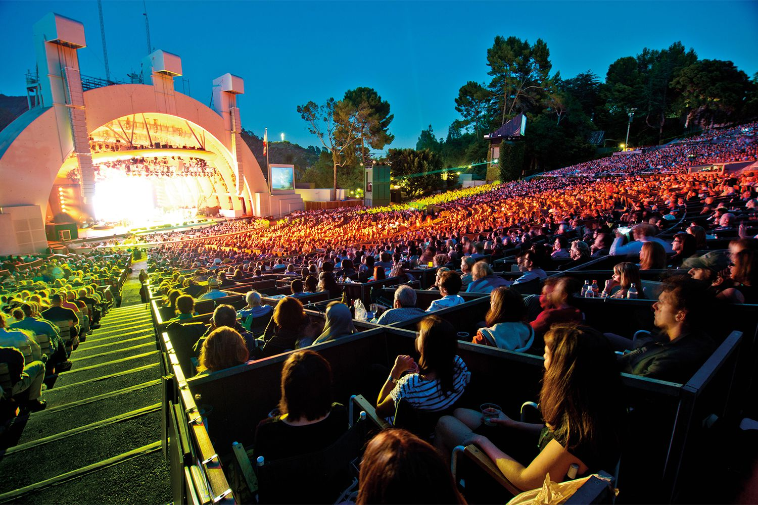 Hollywood Bowl Concerts How To Have A