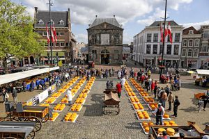 Gouda cheese market, Gouda, Netherlands