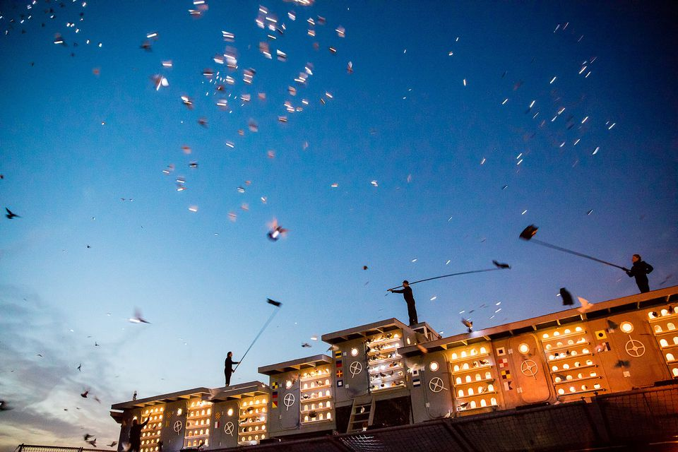 Fly By Night at the Brooklyn Navy Yard