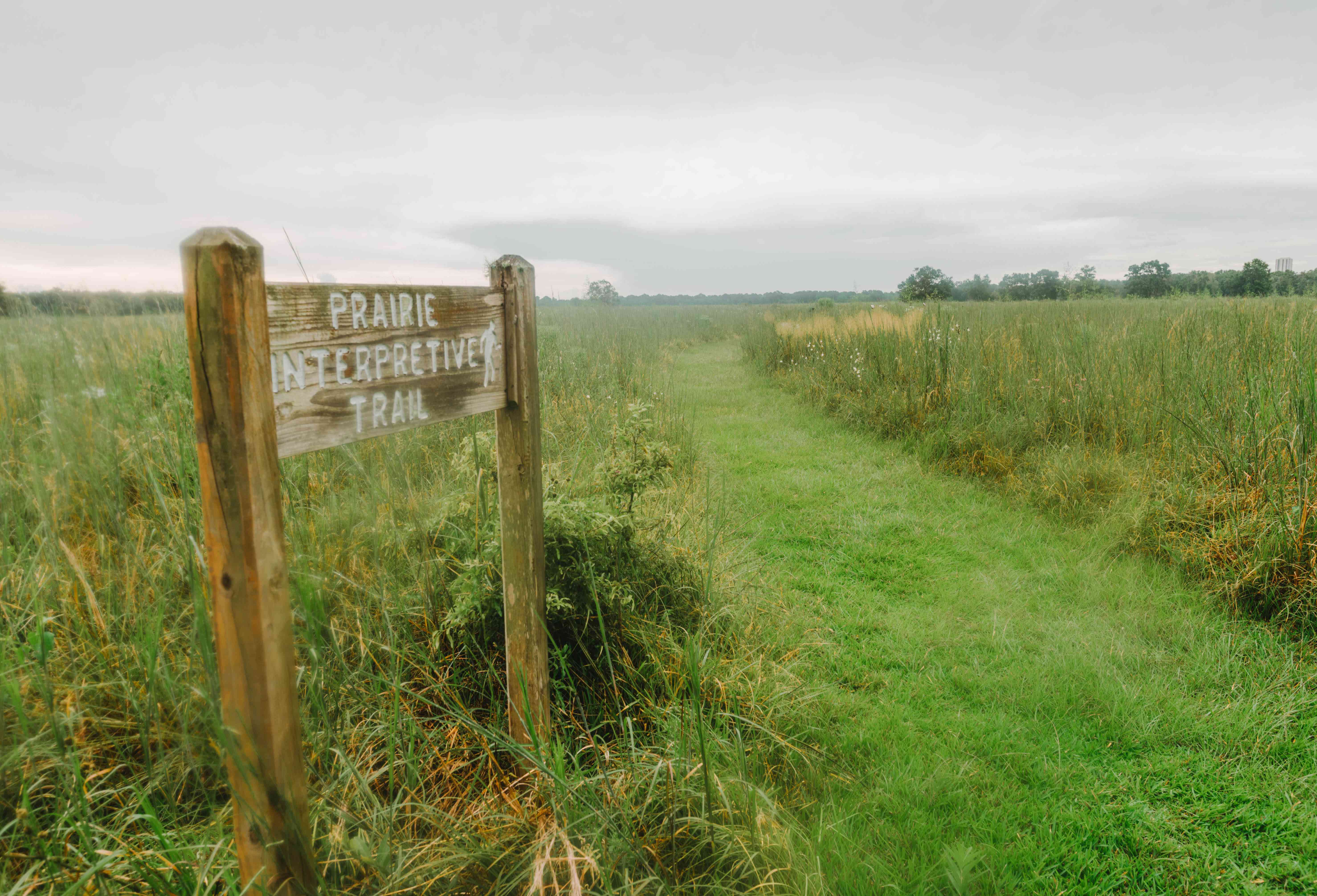 A grassy field with a sign for the Prairie Interpretive Trail