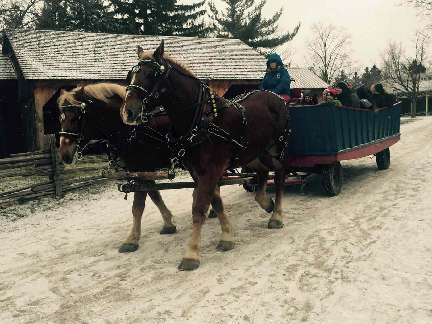 Horse drawn carriage ride at Black Creek Pioneer Village