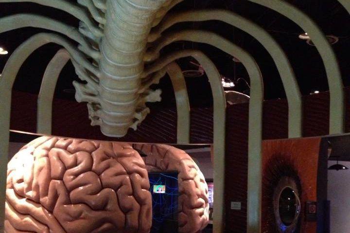 The Houston Health Museum