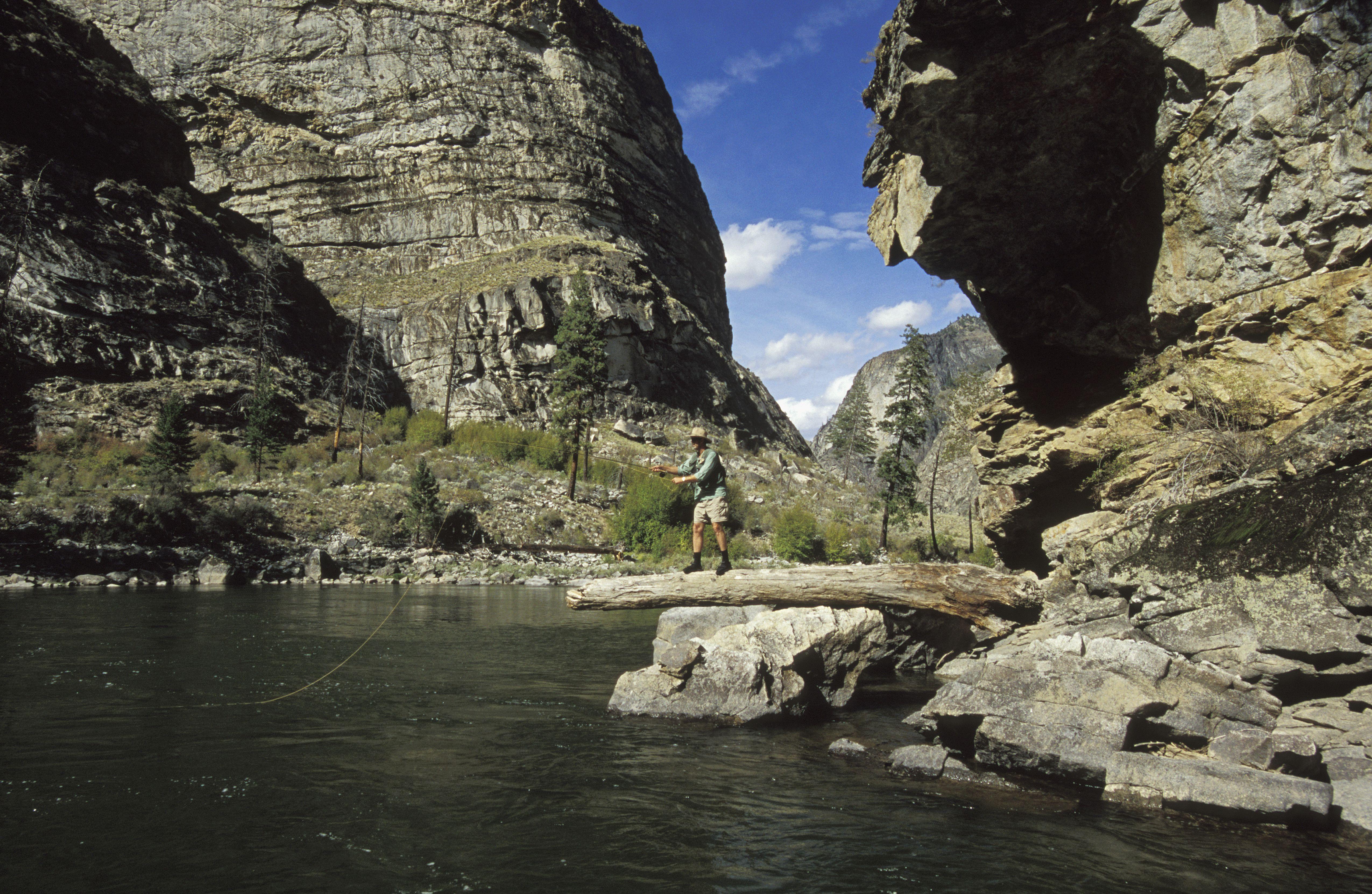 USA, Idaho, Middle Fork of Salmon River, man fly-fishing on log