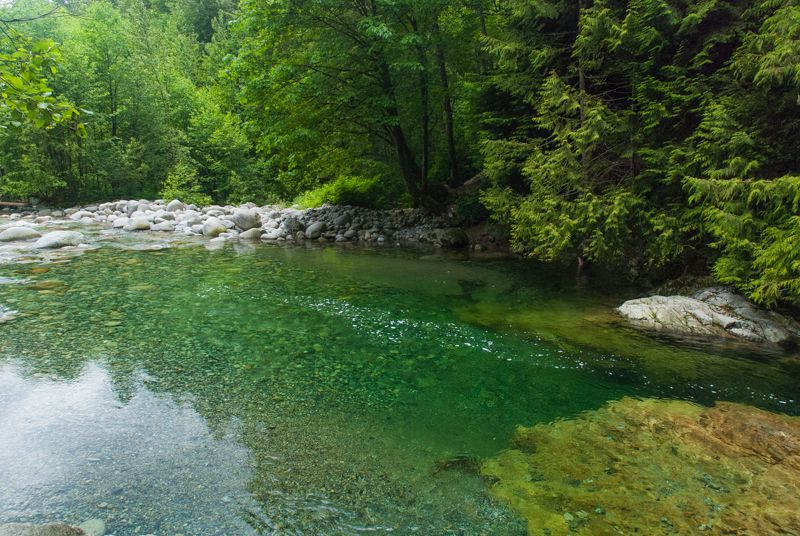 Lynn Canyon's 30-Foot Pool