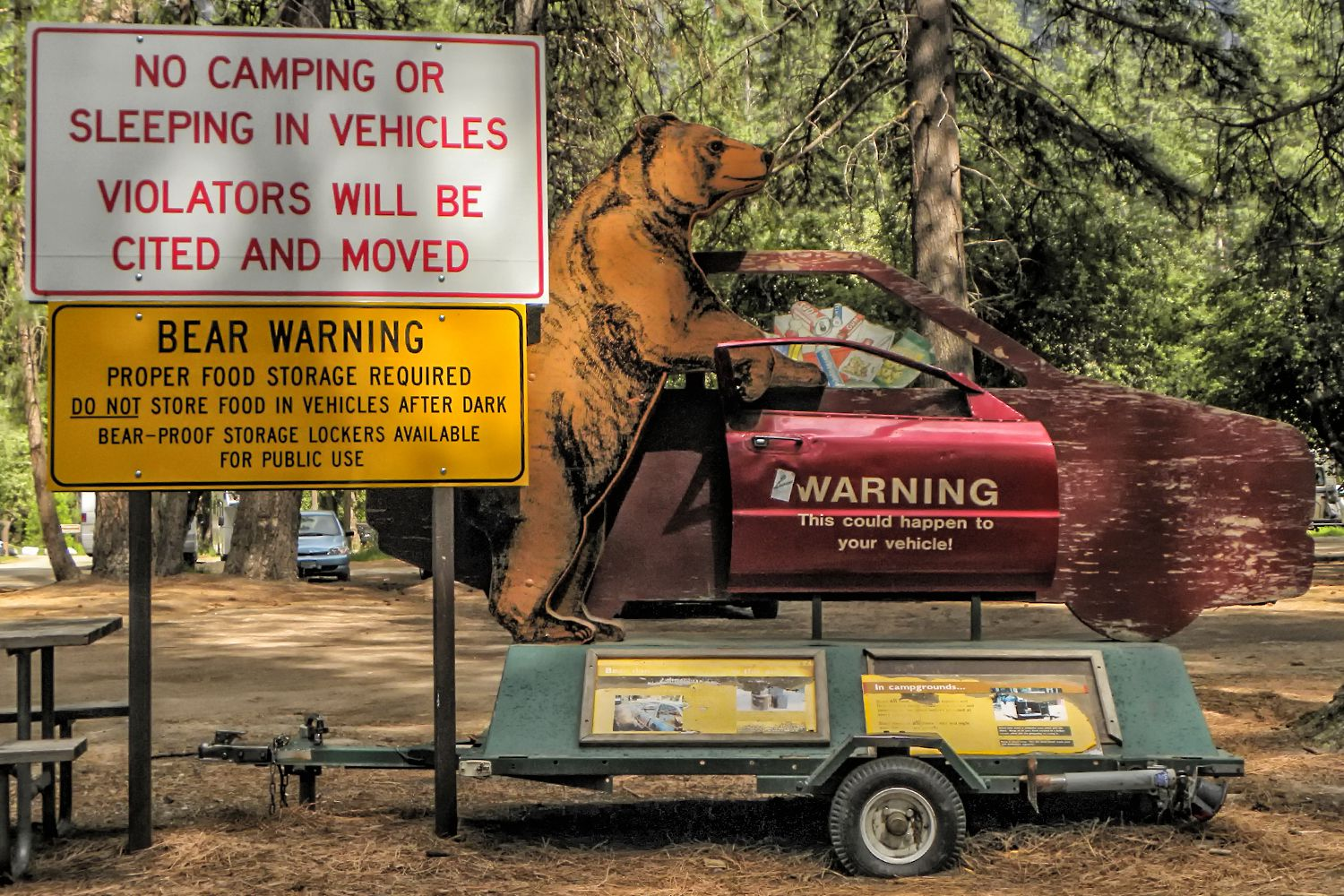 How to be Safe from Bears at Yosemite and Sequoia