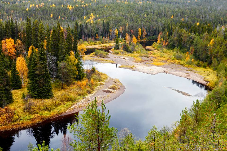 Europe, Finland, Lapland, Kuusamo, Oulanka National Park, a bend in the Oulanka River