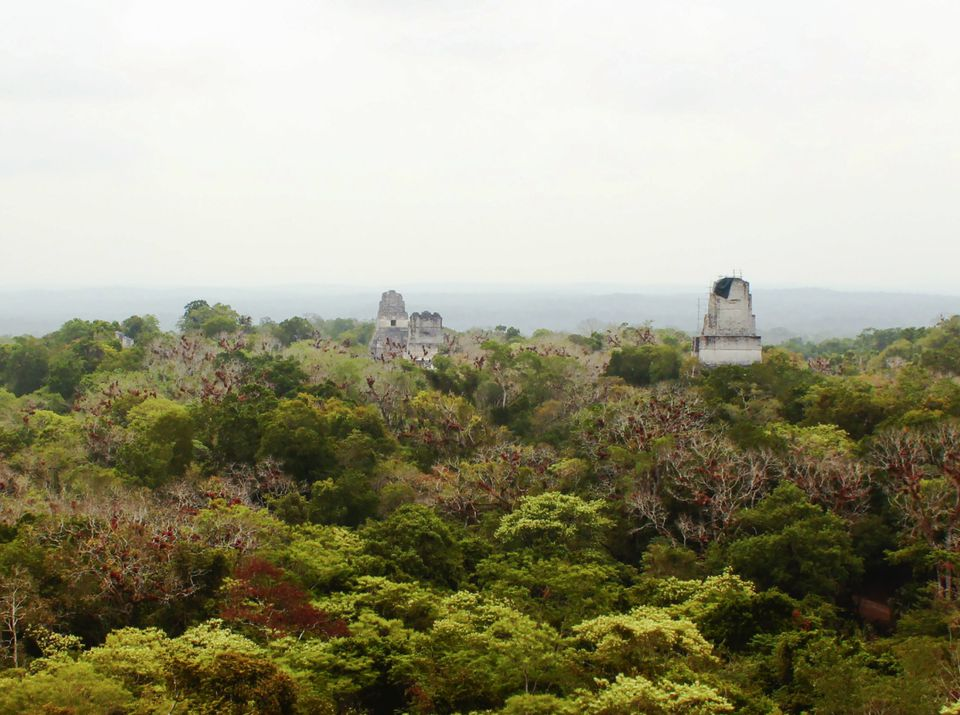 Tikal National Park in Guatemala