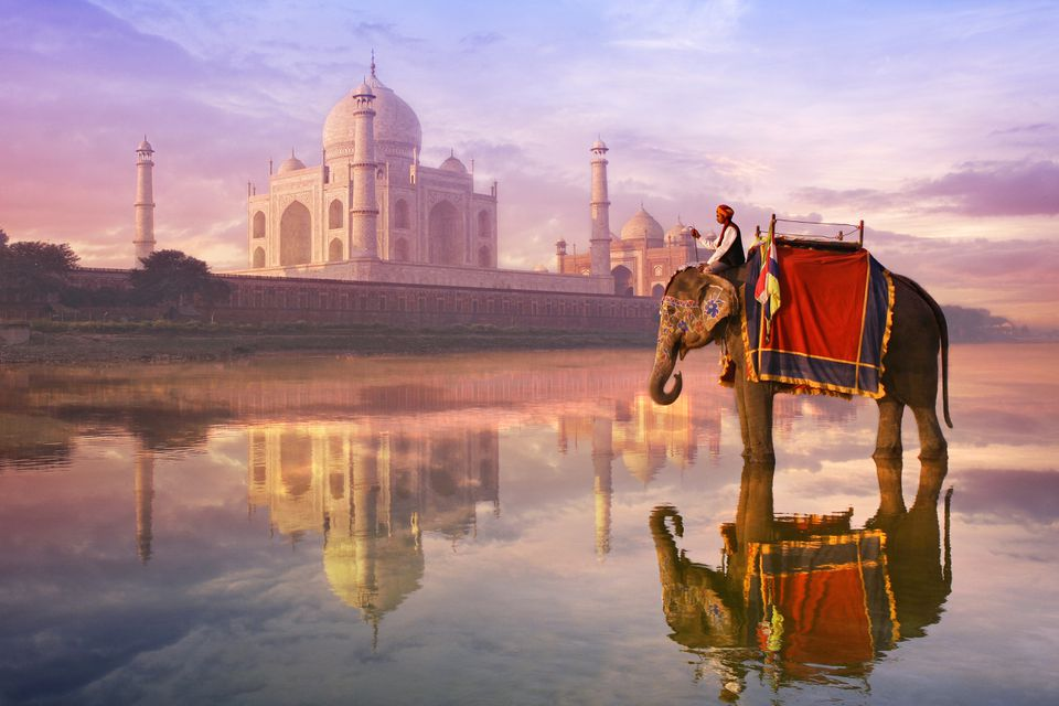 A man on an elephant in front of the Taj Mahal.