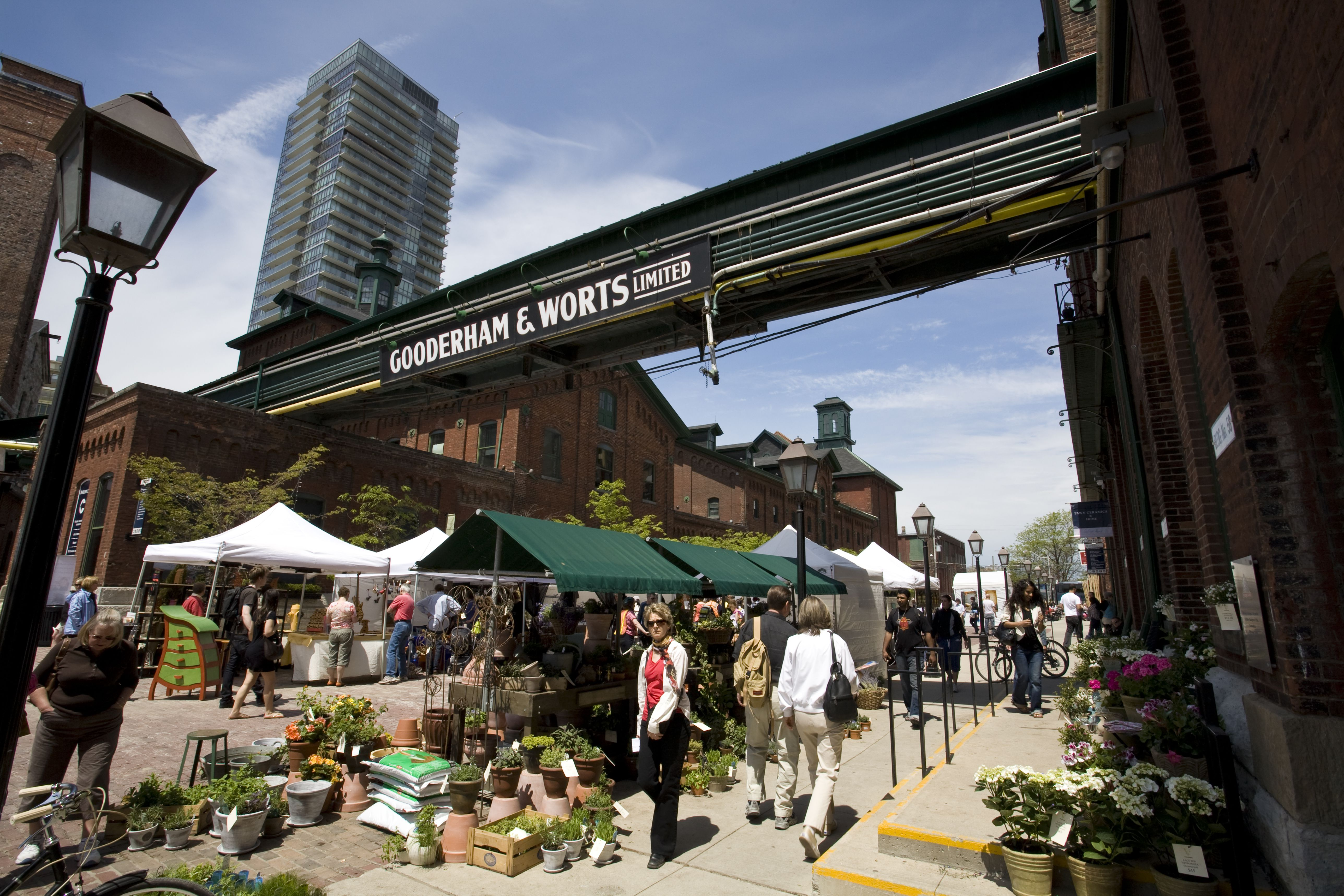 Top 11 Cheap or Free Things to Do in Toronto