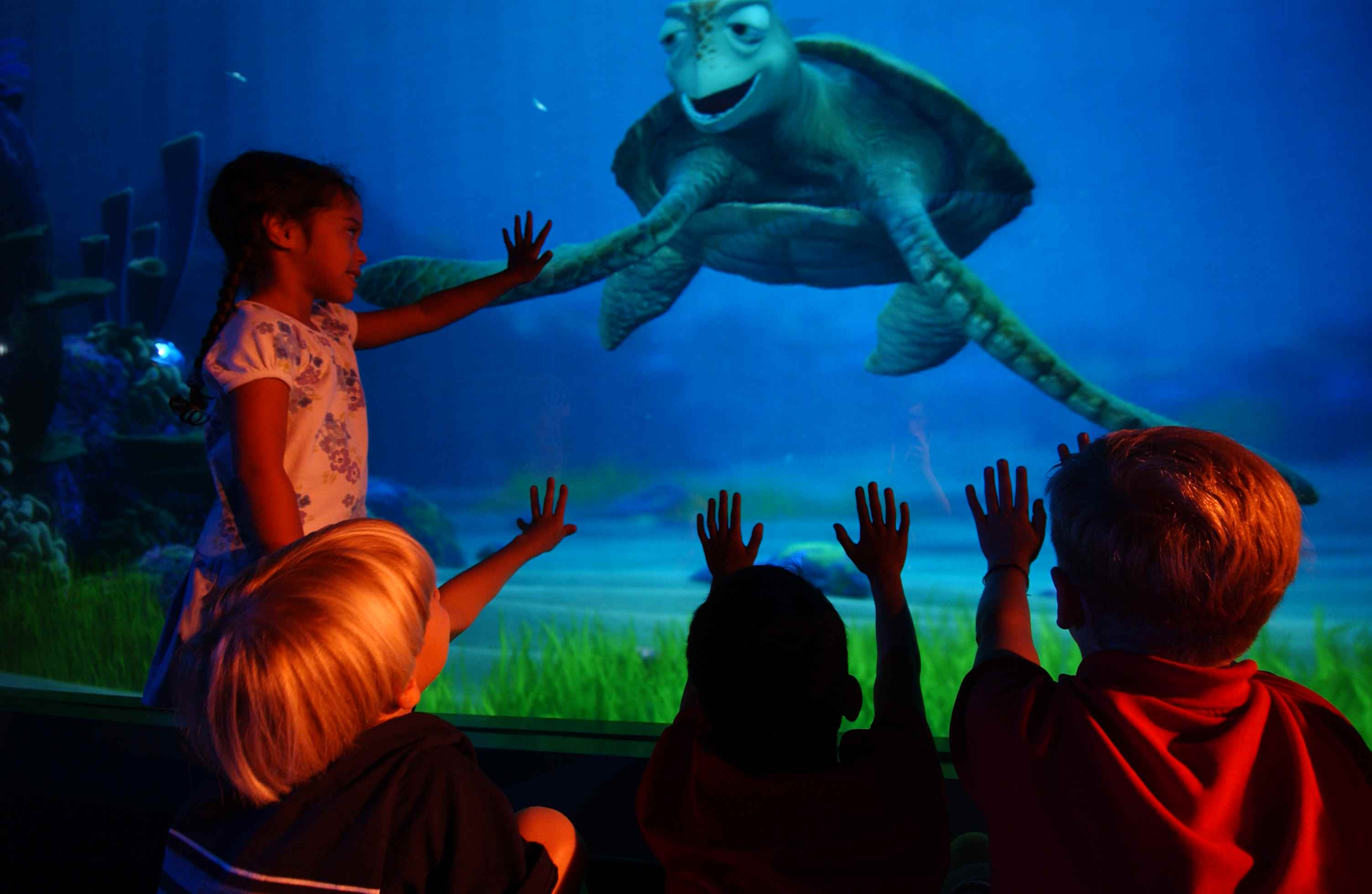 Turtle Talk with Crush, Disney attraction