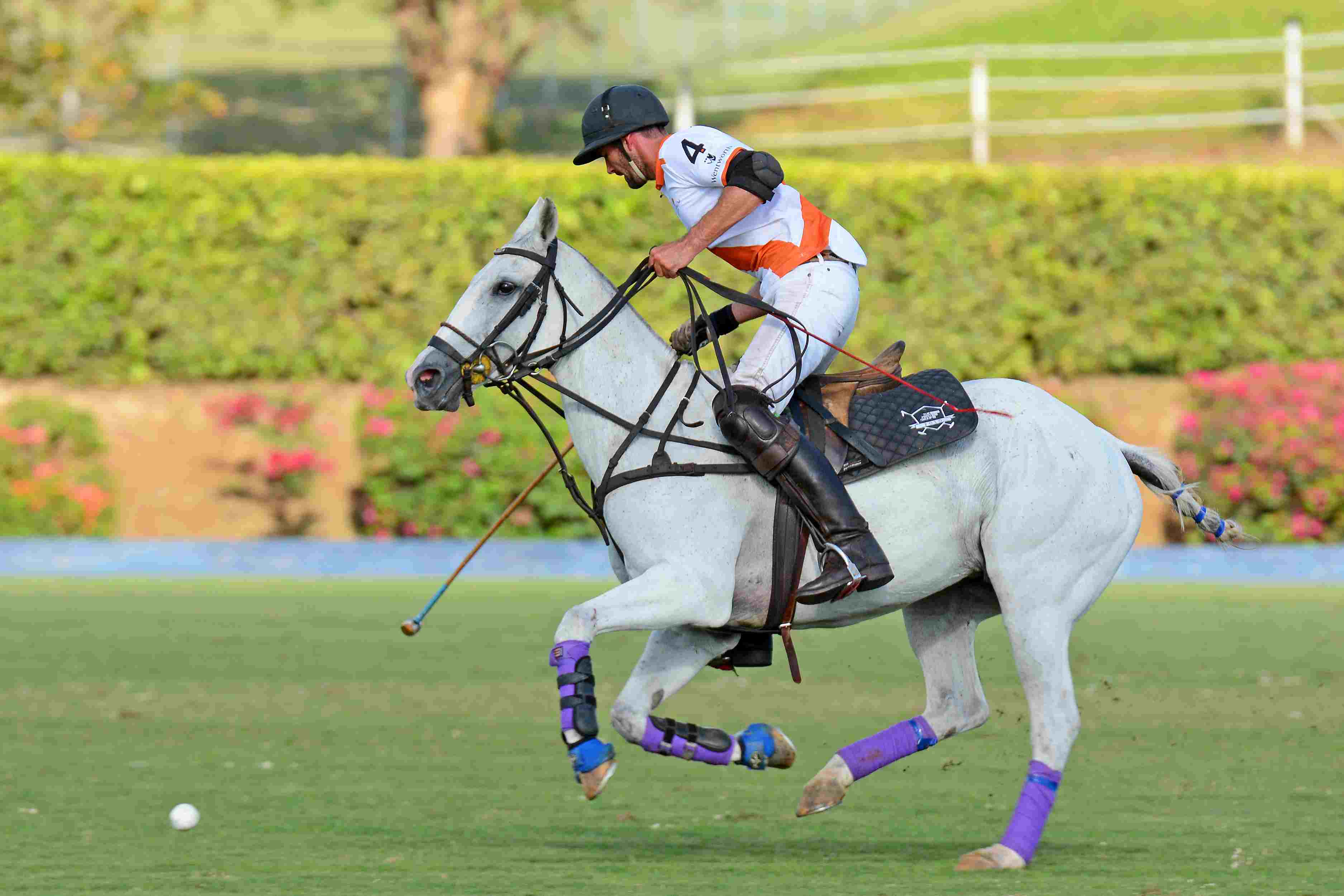 a person playing polo