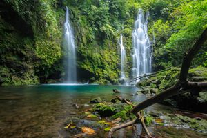 A waterfall in a rainforest in Sumatra