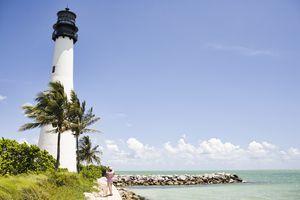 Lighthouse and tropical palm trees near ocean