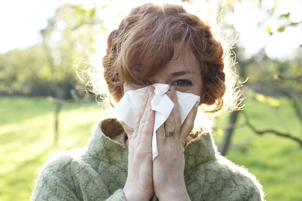 Seattle allergies