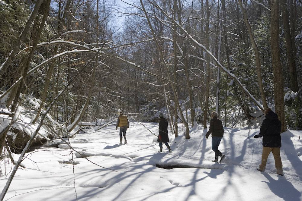 A winter hike through the forest in New York state.