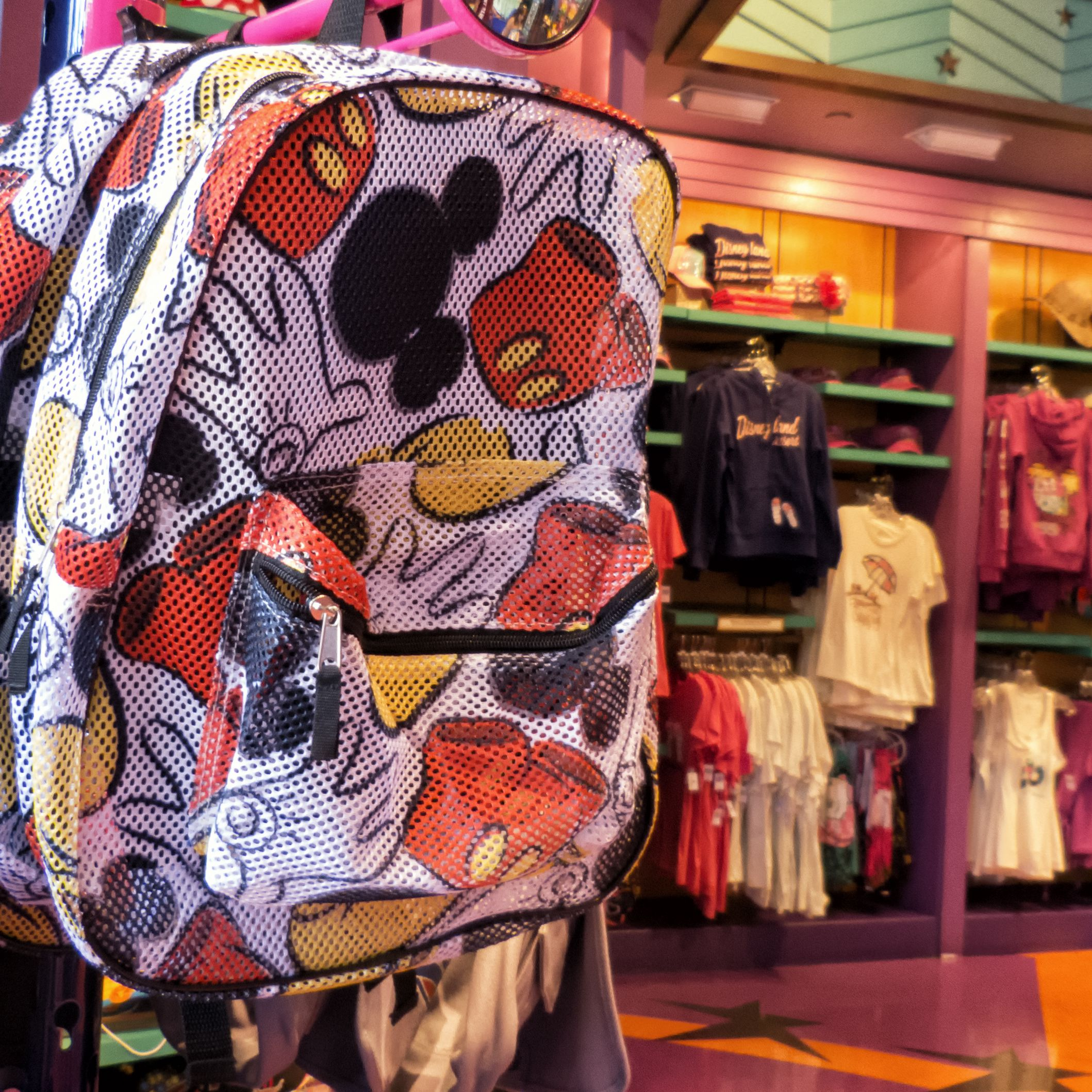 90f6ac0df6b Disneyland Bags   Backpacks  Everything to Know