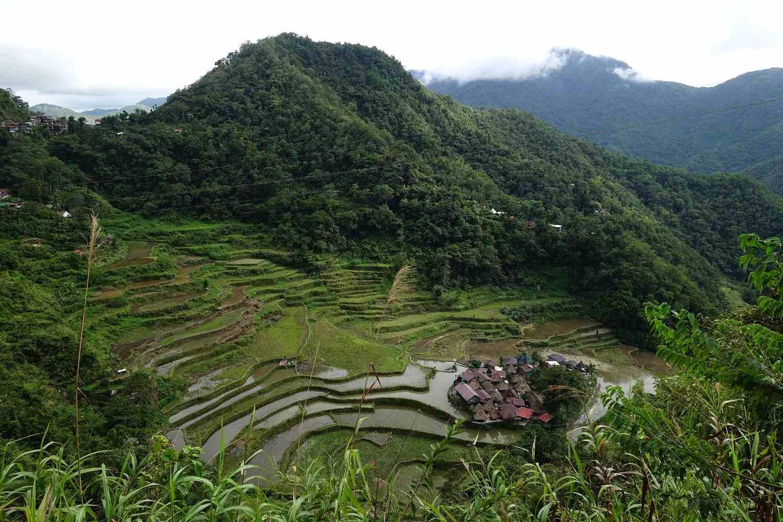 Baangan Rice Terraces, Philippine Cordilleras.