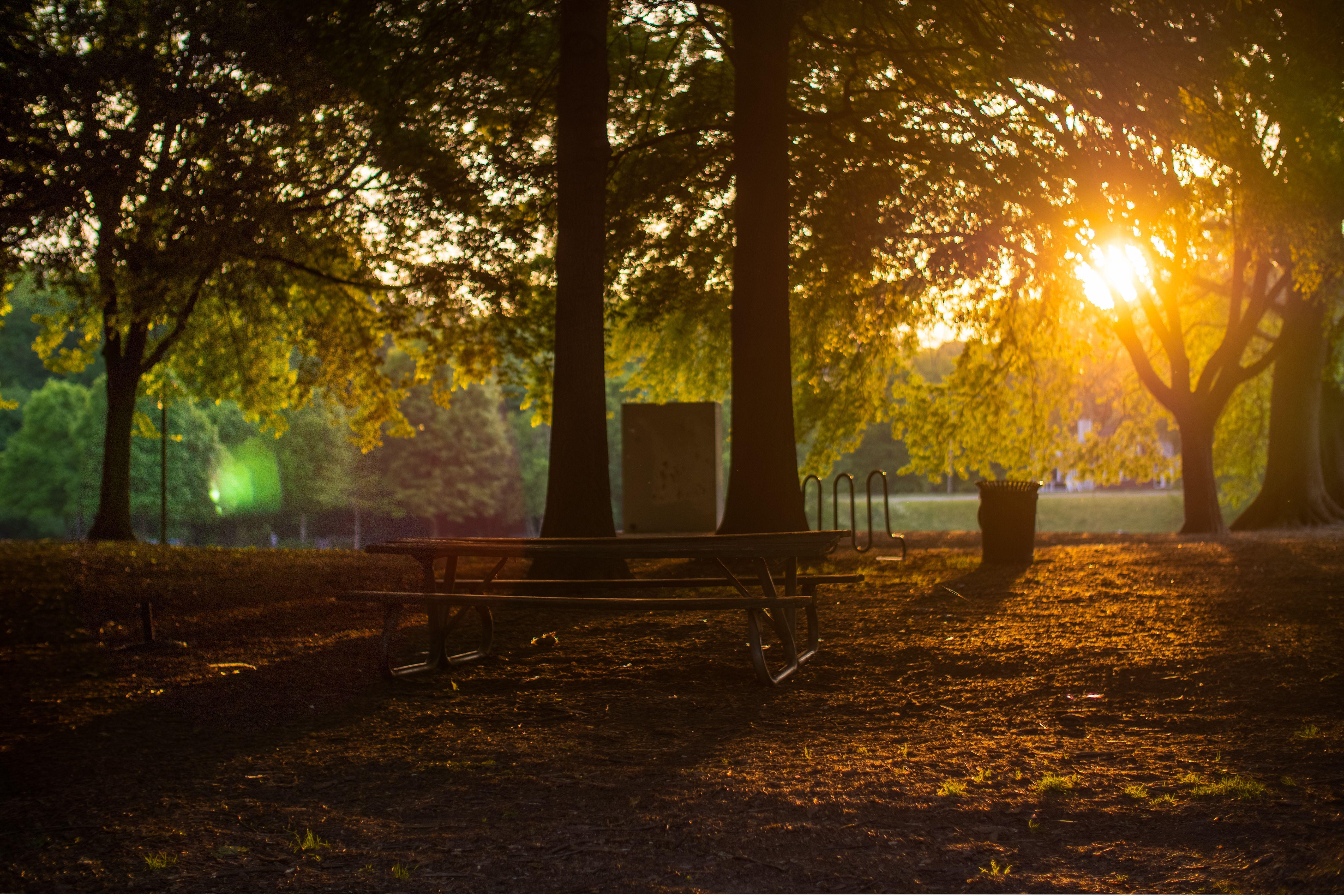 The Best Parks in Atlanta