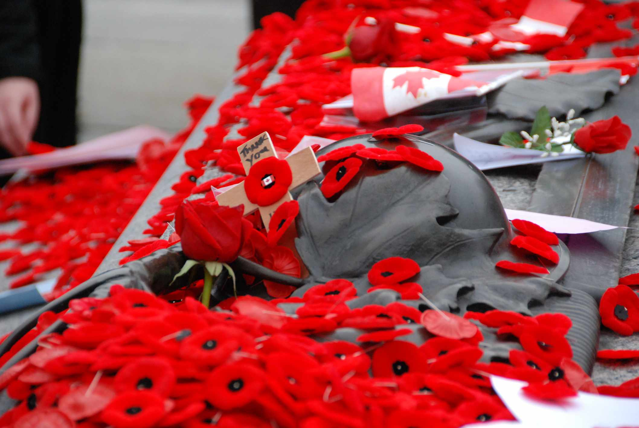 Remembrance Day memorial with poppies and roses in Ottawa, Ontario
