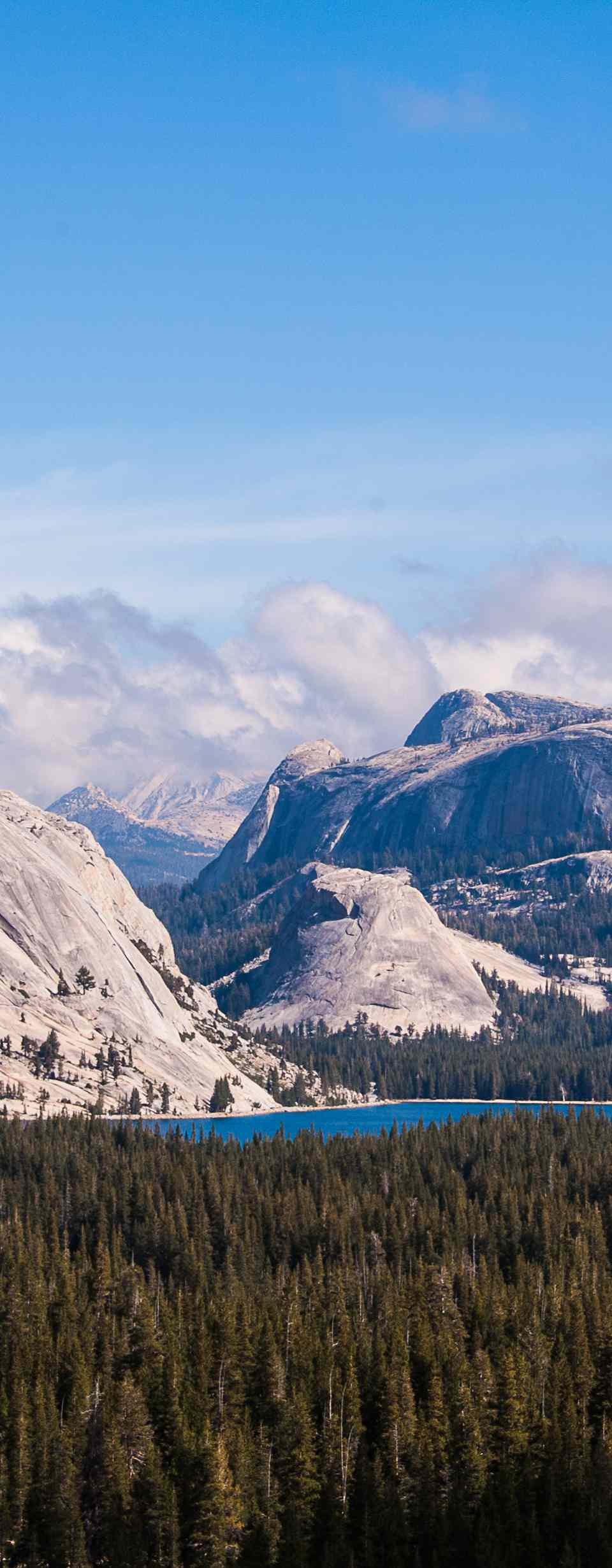 Tioga Pass landscape, Yosemite National Park, California, USA