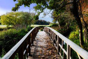 River's Edge Trail wooden walkway